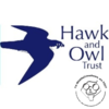 The Hawk and Owl Trust | Norwich Birds of Prey and the City