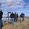 Laramie Audubon   Wyoming Bird Blog