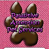 Pawsitive Attention Pet Services