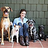 Paw & Whiskers   One-on-One Pet Sitting Service Blog