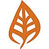 Root Origins Blog