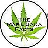 The Marijuana Facts | Cannabis Enthusiasts | Bloggers | Cannabis Educators