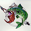 Colorado RedBeard Fishing