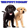 The Puppy Podcast