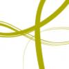 Bournemouth Symphony Orchestra Blog