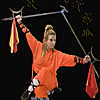 Shaolin y Wudang Kung -Fu Wushu