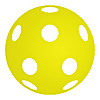 Pickleball Portal