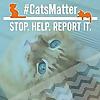 CatsMatter