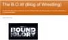 The B.O.W (Blog of Wrestling)
