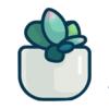 Succulents Addiction