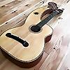 Harpguitar   Gregg's Blogg